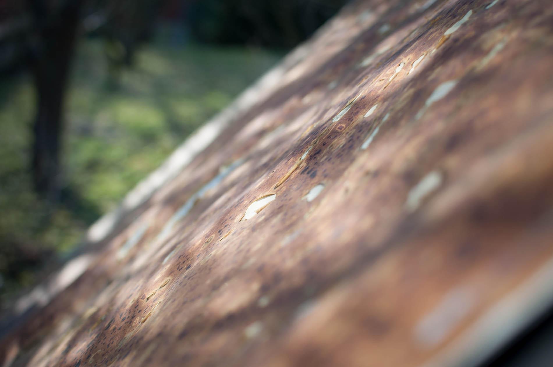 střecha králíkárny