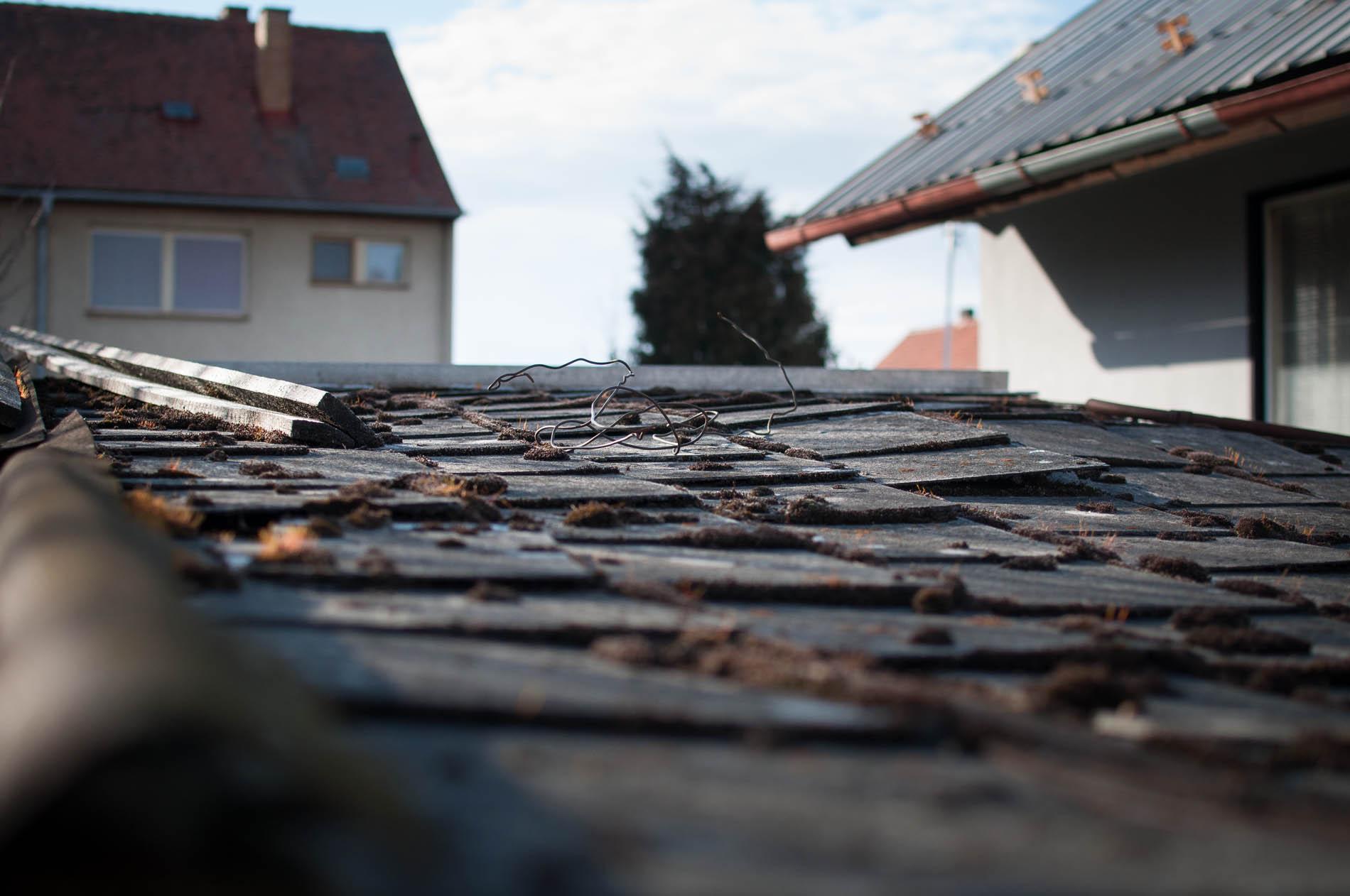 střecha psí boudy a nářaďovny